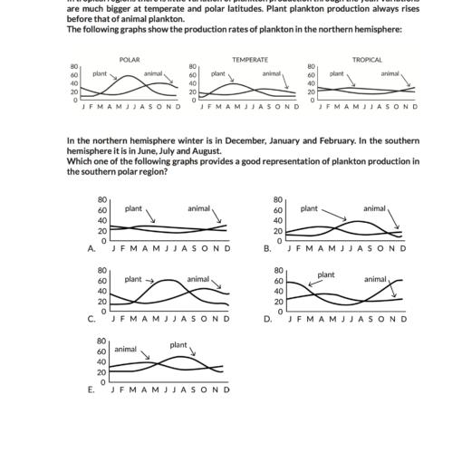 imat-exercise-book-anteprima-pagina-35